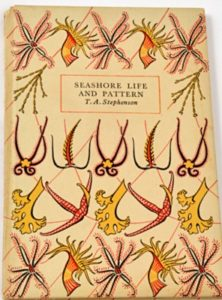 Clare Morpurgo on Penguin Paperbacks - Seashore Life and Pattern by T A Stevenson