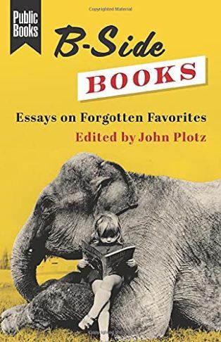 B-Side Books: Essays on Forgotten Favourites edited by John Plotz