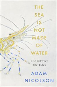 The best books on Tides and Shorelines - The Sea Is Not Made of Water: Life Between the Tides by Adam Nicolson