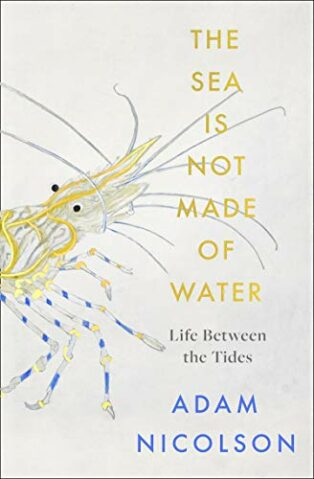 The Sea Is Not Made of Water: Life Between the Tides by Adam Nicolson