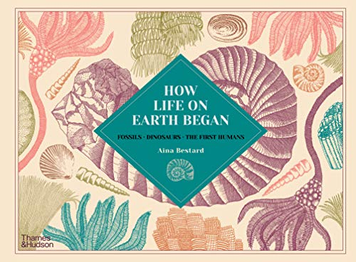 How Life on Earth Began by Aina Bestard