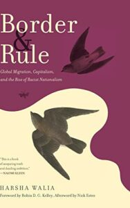 The best books on Immigration and Race - Border and Rule: Global Migration, Capitalism, and the Rise of Racist Nationalism by Harsha Walia