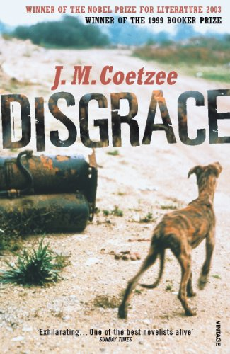 The best books on Post-Apartheid Identity - Disgrace by JM Coetzee