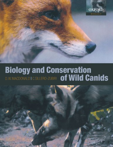 The best books on Dogs - The Biology and Conservation of Wild Canids David W. Macdonald and Claudio Sillero-Zubiri