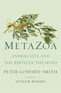 The Best Philosophy Books of 2020 - Metazoa: Animal Life and the Birth of the Mind by Peter Godfrey-Smith