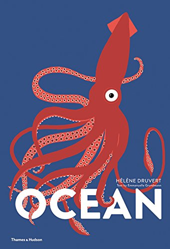 Editors' Picks: The Best Children's Nonfiction of 2018 - Ocean by Emmanuelle Grundmann & Hélène Druvert
