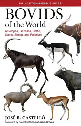 The best books on Dogs - Bovids of the World: Antelopes, Gazelles, Cattle, Goats, Sheep, and Relatives by José Castelló
