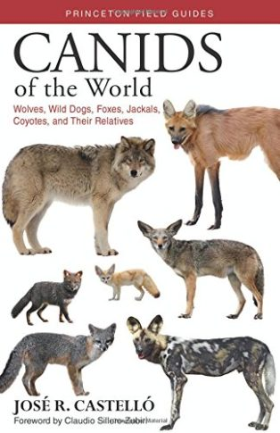 Canids of the World: Wolves, Wild Dogs, Foxes, Jackals, Coyotes, and Their Relatives by José Castelló