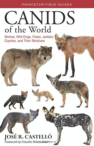 The best books on Dogs - Canids of the World: Wolves, Wild Dogs, Foxes, Jackals, Coyotes, and Their Relatives by José Castelló