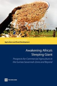 The best books on Africa through African Eyes - Awakening Giant Africa by Charles Nhova