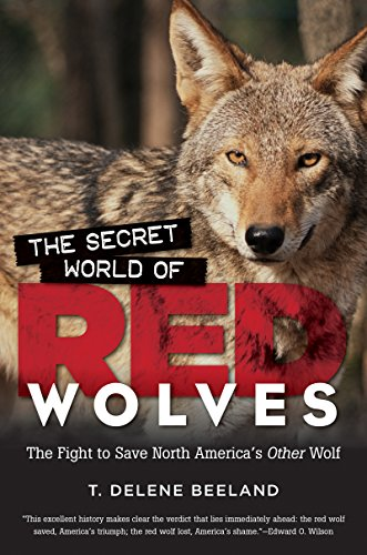 The best books on Dogs: The Secret World of Red Wolves: The Fight to Save North America's Other Wolf by T DeLene Beeland