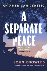 The best books on Coming of Age - A Separate Peace by John Knowles