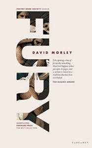 The Best Poetry Books of 2020 - Fury by David Morley
