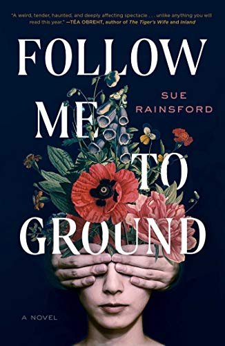 Follow Me to Ground by Sue Rainsford