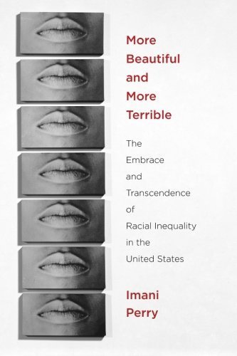 African American History Books - More Beautiful and More Terrible: The Embrace and Transcendence of Racial Inequality in the United States by Imani Perry