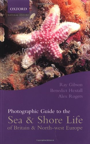 Photographic Guide to the Sea & Shore Life of Britain & North-west Europe by Alex Rogers, Benedict Hextall & Ray Gibson